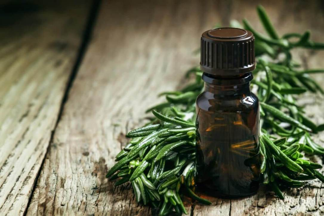 25-Uses-for-Tea-Tree-Oil-Keeper-of-the-Home-feat